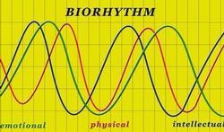 Test je bioritme