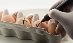 123-doos-eieren-170-11.jpg