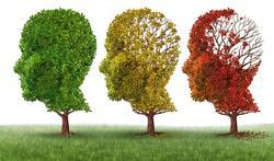 Lopen vrouwen grotere kans op Alzheimer dan mannen?