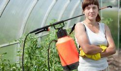 Pesticiden in voeding beneden residunorm