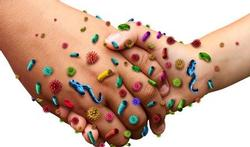 10 dagdagelijkse voorwerpen die meer bacteriën bevatten dan je wc-bril