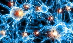 Risico op Alzheimer: wat verhoogt het en wat verlaagt het?