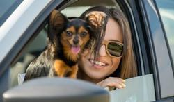Rabiës: welke huisdieren moeten gevaccineerd worden?