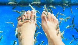 Gezondheidsrisico's van baden met knabbelvisjes of ichtyotherapie