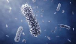 Wereld PI-week:Welke signalen kunnen wijzen op primaire immuundeficiëntie (PI)?
