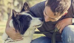 Hondenbezitters hebben minder hart- en vaatziekten