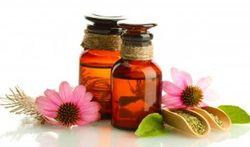 Helpt Echinacea tegen verkoudheid?