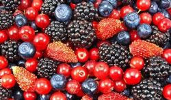 Hoe gezond zijn bramen, kruisbessen, blauwe en rode bessen?