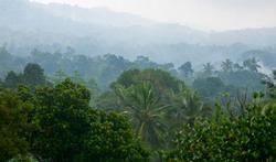 Malaria en buiktyfus zijn grootste risico in tropen