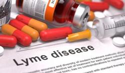 Langdurig antibioticagebruik geen voordeel bij langdurige klachten Lyme