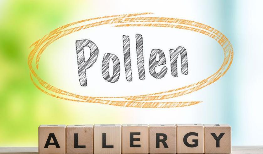 123-txt-pollen-allergie-05-17.jpg