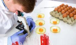 Ernstige voedselinfectie door salmonella verhoogt kans op darmkanker