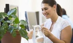 Groen op kantoor maakt gelukkiger en productiever