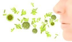 Allergietest voor huisstofmijt via de neus