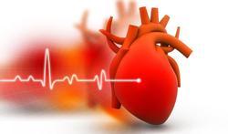 Infosessie: 'Het hart: risicofactoren en bescherming'