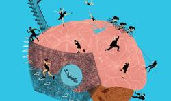 I-Brain wetenschapsfestival Brein & Bewegen