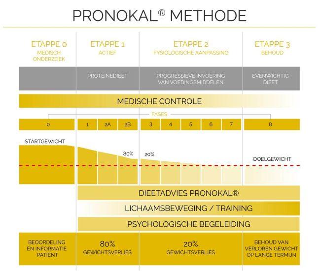 pronokal_02b.jpg