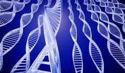 Negen genen voorspellen ziekteverloop prostaatkanker