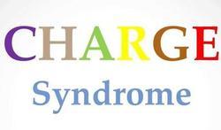 Het CHARGE-syndroom / Een ernstige aangeboren aandoening