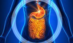 Digestion difficile : causes, symptômes et traitements