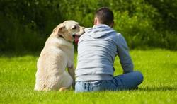 Maladie mentale : le soutien des chiens et des chats