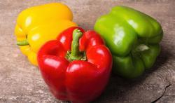 Rouge, jaune, vert : le poivron, du soleil dans vos recettes