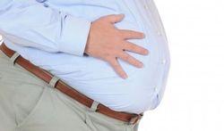 Vidéo - Obésité : le rôle des bactéries intestinales