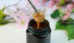 Le miel de manuka : une arme contre les infections