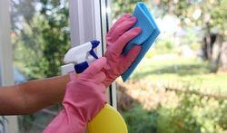 Nettoyer ses vitres en les protégeant contre les insectes