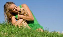 Le chien, l'ami de votre cœur