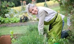 Pour maigrir, faites du jardinage !