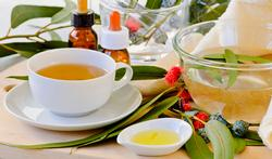 L'eucalyptus, le remède naturel anti-rhume