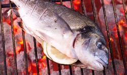 Bien cuire le poisson au barbecue
