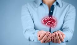 Santé du cerveau : faites le plein d'oméga-3