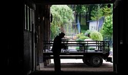 Un élixir de longue vie grâce aux Amish ?