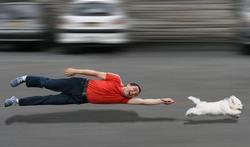 Que faire si votre chien tire trop sur sa laisse ?