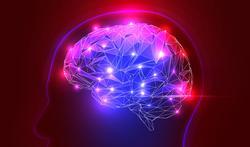 Alzheimer : surveillez bien votre taux de vitamine D