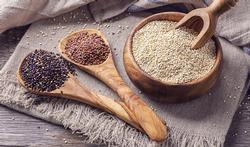 Que faut-il savoir sur le quinoa ?