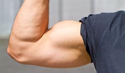 Maladie cardiovasculaire : vos bras, fins ou musclés ?