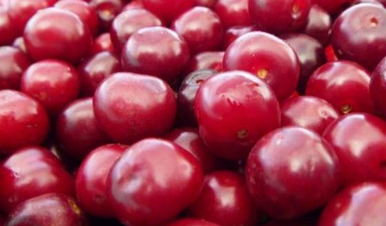 Les cerises pour soulager l arthrose passionsant be - Bicarbonate de soude bienfait ...