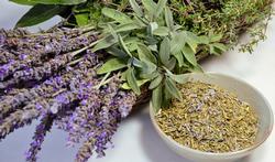 De quoi se composent les herbes de Provence ?