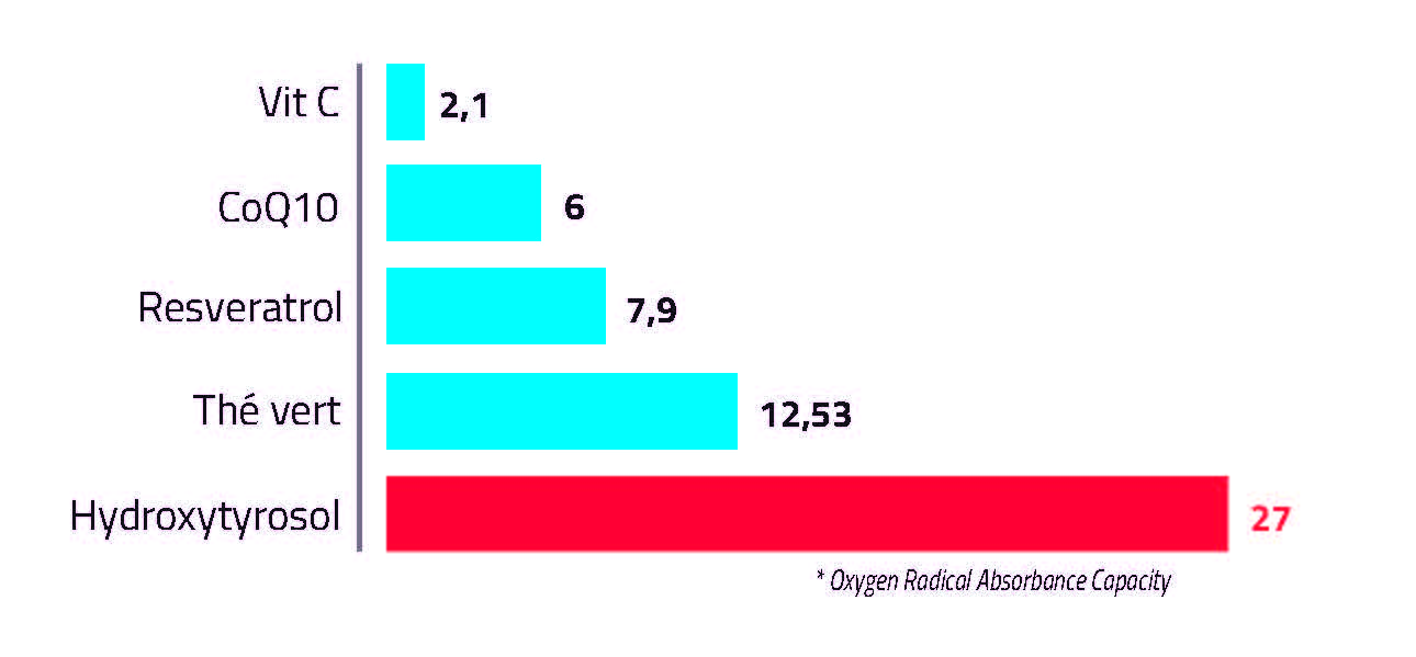 tab-antioxydant-fr2.pdf.jpg