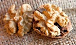 Pourquoi les noix protègent si bien vos artères