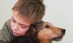 Ook huisdieren krijgen dementie