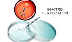 In-vitrofertilisatie: een moeilijk parcours met risico's op discriminatie
