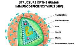 Twintigers lopen meeste risico op soa en hiv