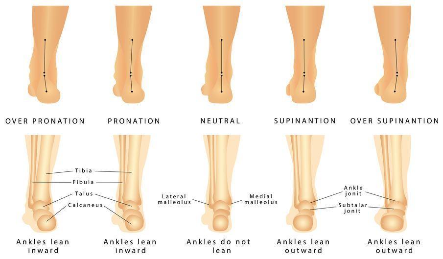 123-anatomie-afw-voetstand-pronatie-supinatie-09-19.jpg