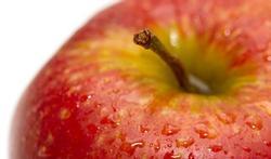 Product in de kijker: appel