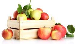 123-appelen-fruit-bak-170-10.jpg