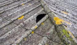 Hoe gevaarlijk is asbest?